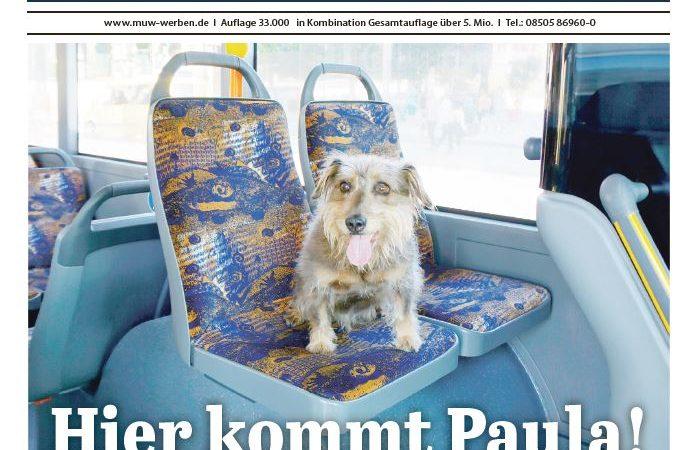 'Mein Passau', Ausgabe KW 37/16